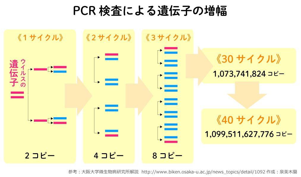 新型コロナ PCR検査 Ct値
